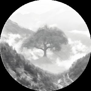 Mystic Valley Designs Light Logo